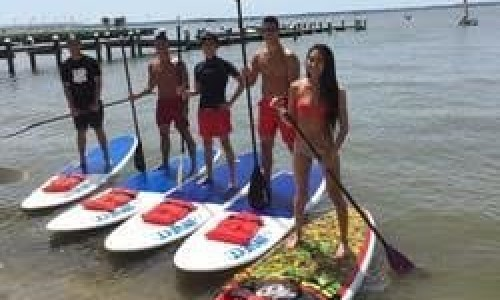Five People Standing on Stand Up Paddle Boards in Bay