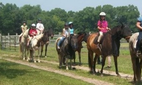 Horseback Rider's in a Line